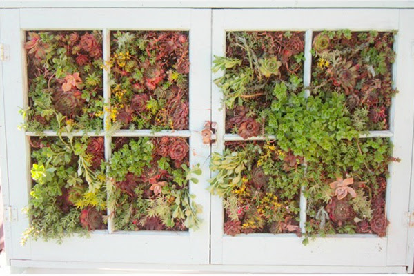 Making A Vertical Garden Out Of An Old Window Frame