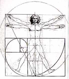 Homem: A Obra prima Divina.