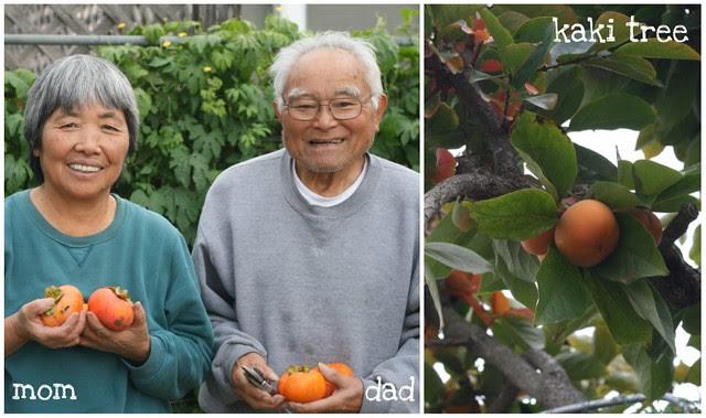 Fuyu Persimmon Bundt collage 3