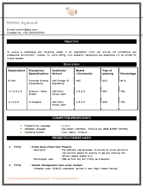 Resume for freshers b tech will you be 10 years from now essay