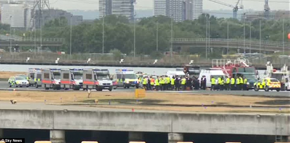 Dozens of police officers were at the airport this morning in an attempt to move the protesters from the runway. Scotland Yard said it did not know how many officers were involved in the operation