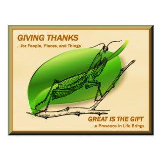 Praying Mantis Giving Thanks