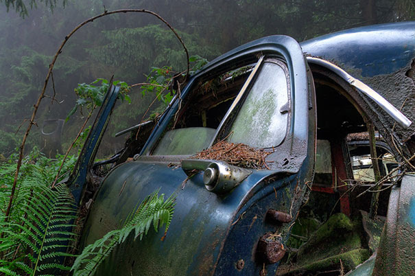 Chatillon-car-cemitério abandonado-carros-cemitério-Bélgica-6