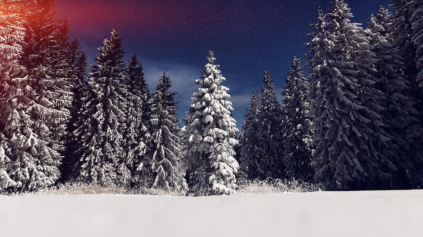 Mz24 Snow Winter Wood Mountain Sky Star Night Flare