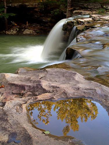 Still water at Falling Water