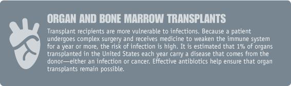 organ and bone marrow transplants image