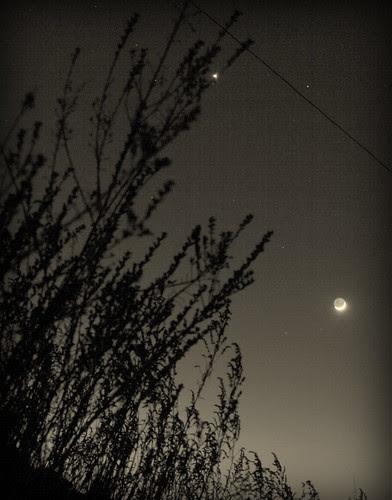 IMG 3565 Armidale at Dawn