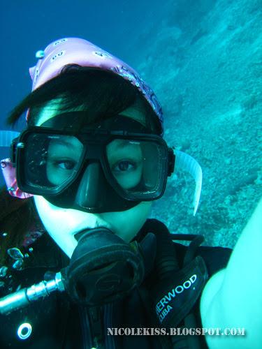 nicolekiss diving 2