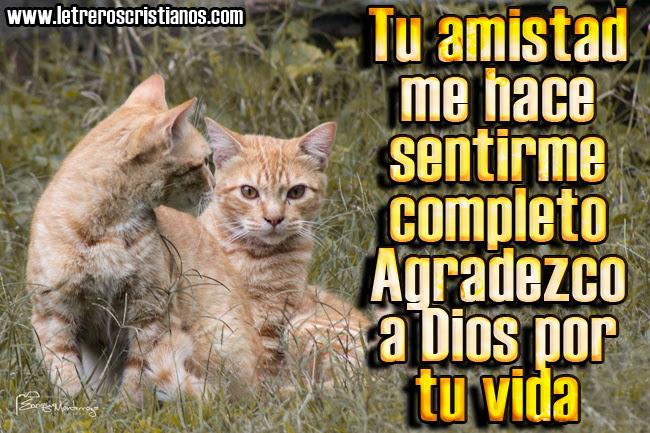 Postales Cristianas De Amistad Dios Es Tu Amigo Imagenes