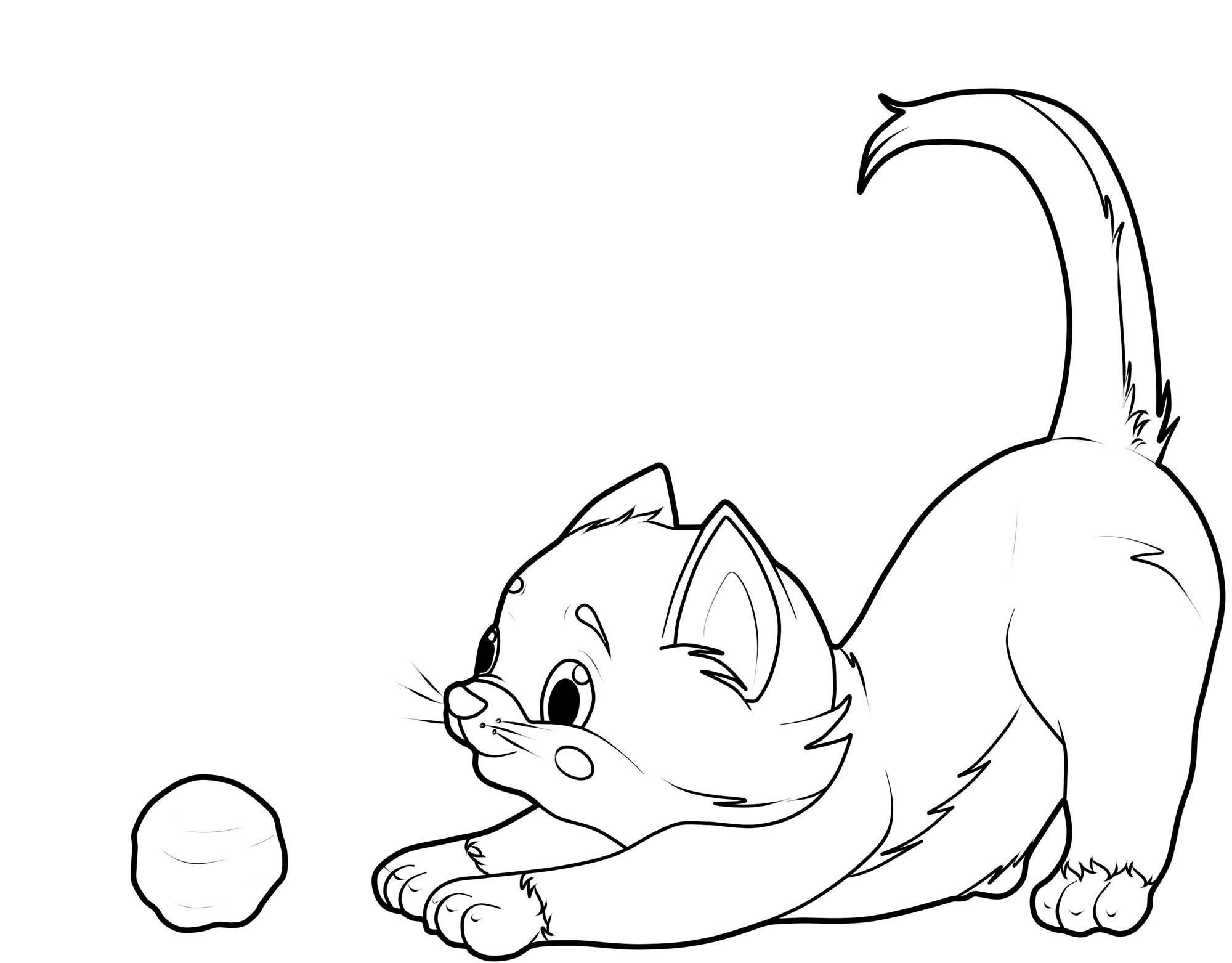 katze spielt mit wollknaeuel