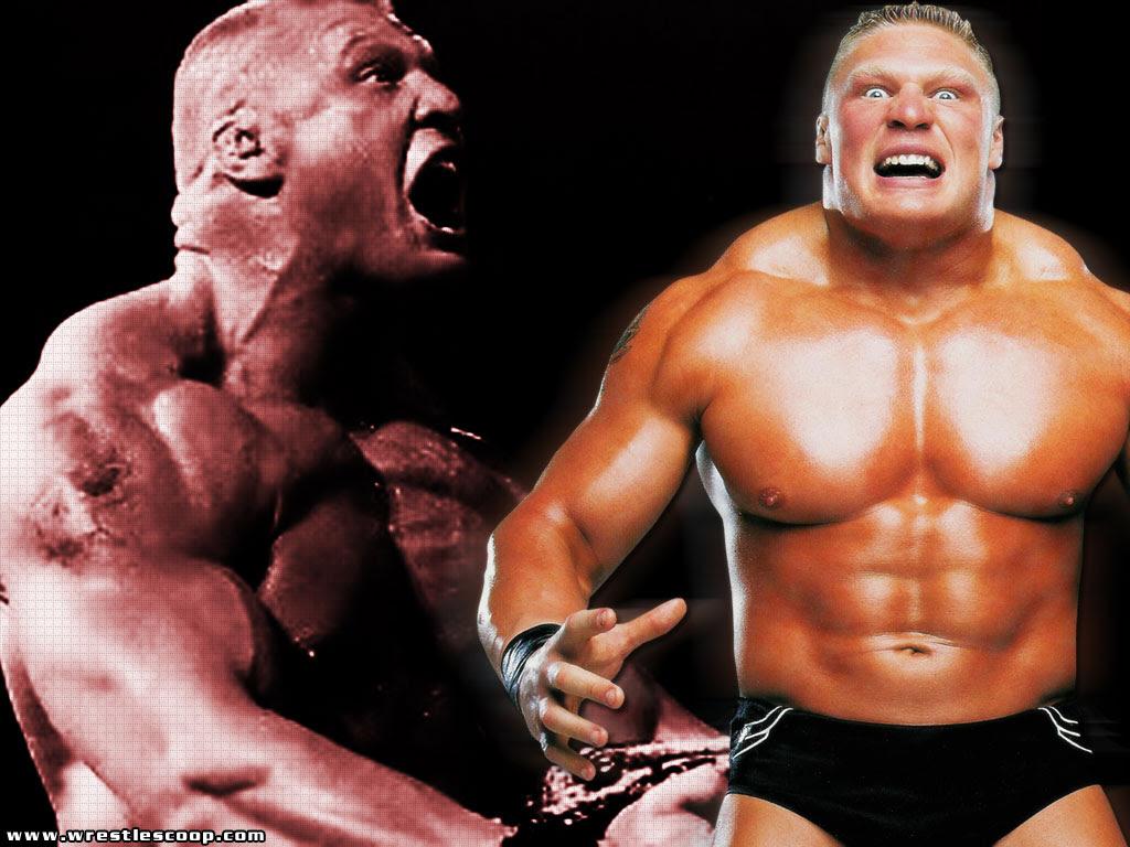 Brock Lesnar Wallpaper 1024x768 61827