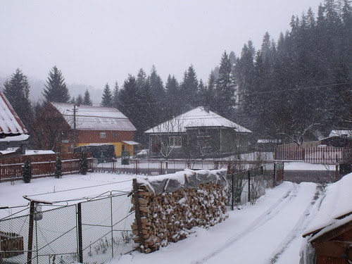 15 mars, hiver de retour by martamaghiar