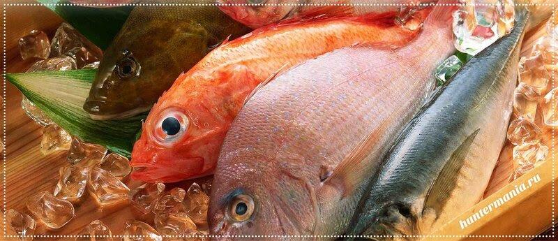 Еще немного о рыбе (полезно знать)