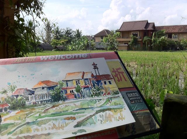 Ubud's Padi fields