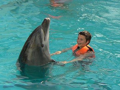 paul et dauphins.jpg