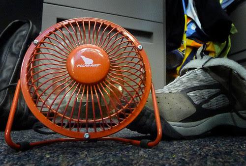 My little fan