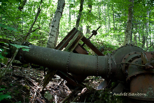 Abandoned Penstock & Turbine in Westmore (looking uphill)-6.jpg