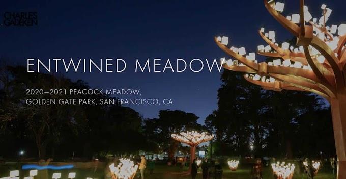 Entwined Meadow: Σαν Φρανσίσκο. Μαγεμένο & πολύχρωμο δάσος