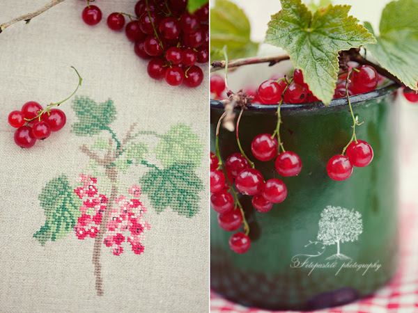 "Redcurrant (from acu book ""Gartenpoesie"")"