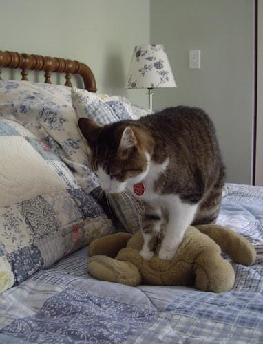 Capricha with Winnie the Pooh