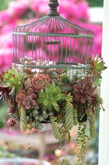 cage With These Decorations Make Your Garden Look More Interesting