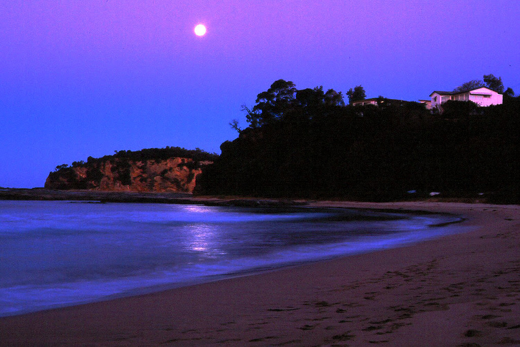 Oz-moonrise