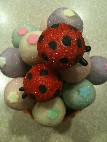 Ladybug Lollies