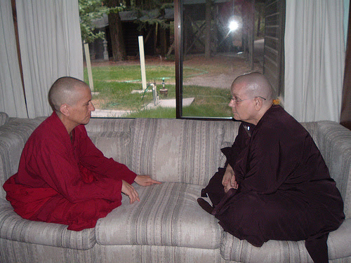A chance to chat on the sofa annual meeting Western Sangha