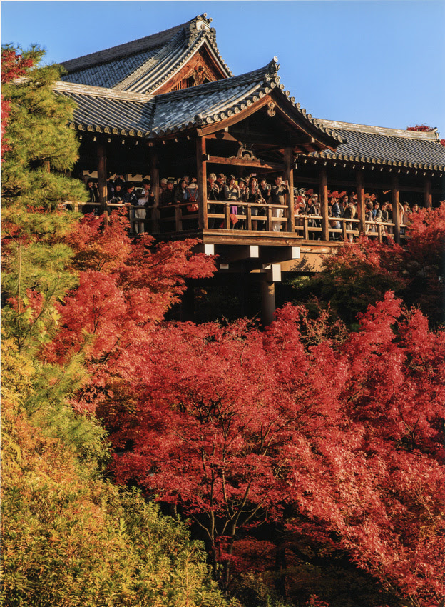 Fall in Asia on L.Type on Fuji DPII Crystal Archive Lustre