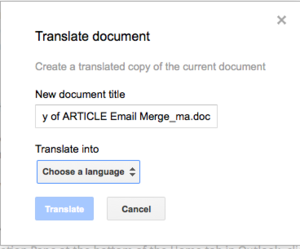 drive translate document