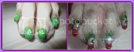nail-polish-for-dogs