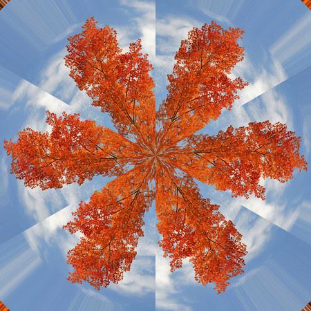 Autumnflake