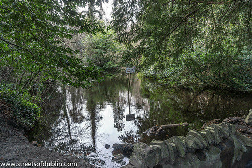 Deep Water: Bushy Park is a large public park in Rathfarnham, Dublin (Ireland) by infomatique