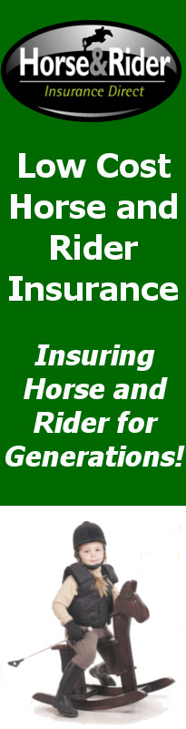 Horse Insurance Specialists | Horse and Rider Insurance Direct