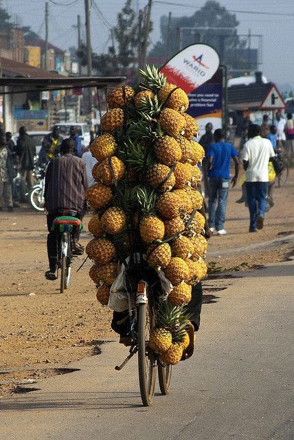 http://littlebrumble.tumblr.com/post/122461188831/pineapples-by-bike