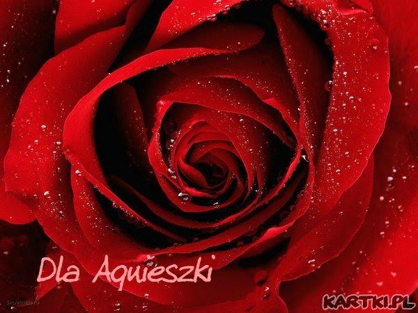 Dla Agnieszki Kartkipl