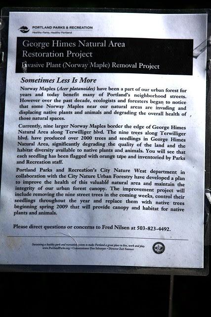Maple Alert, George Himes Park