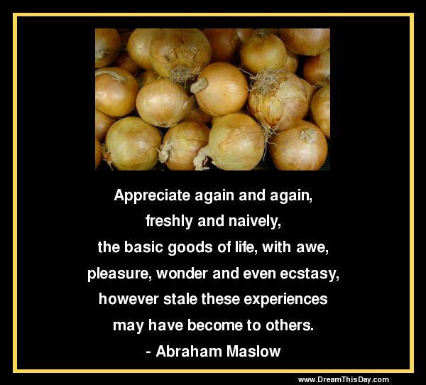 Appreciate What You Have Quotes Appreciate Life Quotes