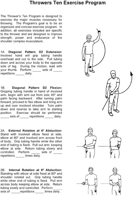 Shoulder Exercises Physical Therapy