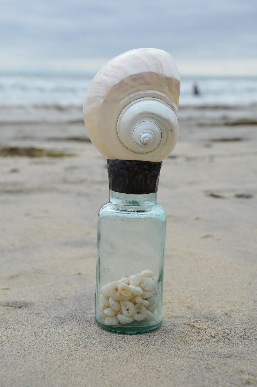 the Sea Glass is Half Full...