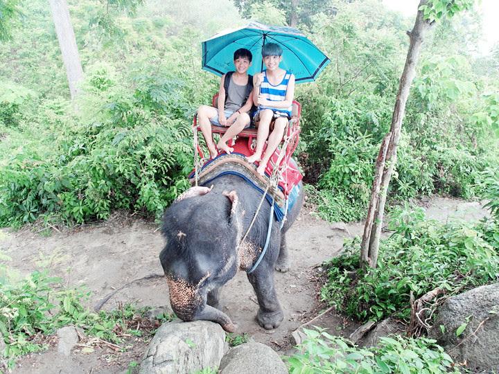 phuket elephant riding typicalben 7