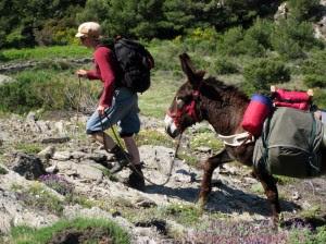 Eseltrekking  Spanien