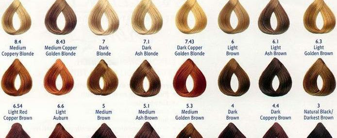 What Hair Color Brand Covers Gray Hair Best
