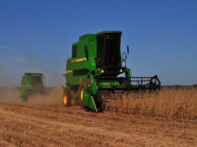 Tierras agrícolas de Alto Paraná son más caras que las de EEUU