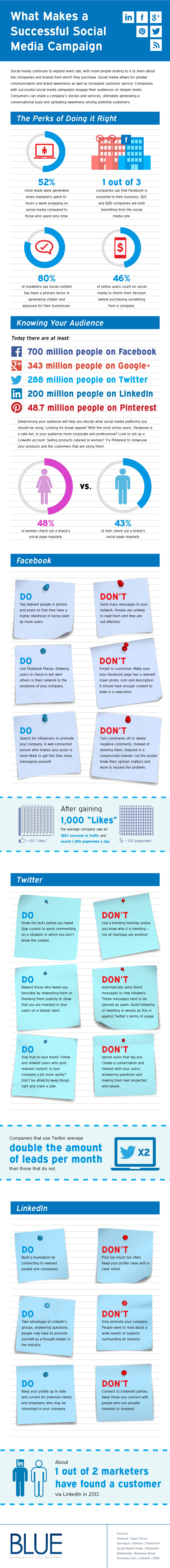 How To Make A Successful Social Media Campaign : infographic