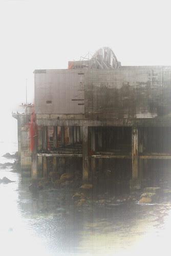 Foggy Cannery Row Morning