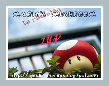contest funghi