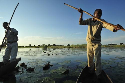 Botswana - Okavango Delta- Copyright Jeffrey Barbee