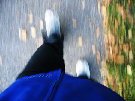 7days:3 :: walking :: ute og går