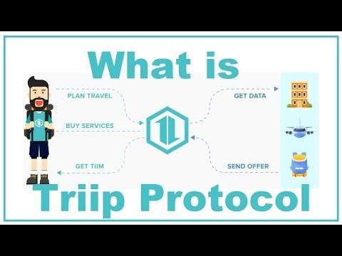 Triip Protocol ICO Review